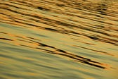 Natural light ocean wave texture — Stockfoto