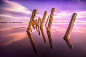 Poles in the water at night on a background stars — Stock Photo