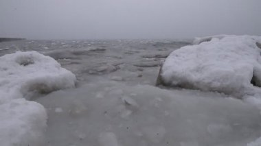 Polars frozen ocean in the fog - ice-floes on the waves and seagulls fly, with the sound of ocean noise — Stock Video