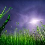 UFO flying rays - night full moon landscape — Stock Photo #47946373