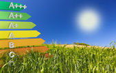 Label of EU energy-saving or Energy efficiency Class definition for on a cornfield — Stockfoto