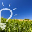 Ecological renewable idea of a light-bulb on a greenfield and blue sky — Stockfoto