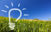 Ecological renewable idea of a light-bulb on a greenfield and blue sky — Stok fotoğraf