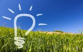 Ekologiczny pomysł odnawialnych żarówki na greenfield i niebieski niebo — Zdjęcie stockowe