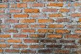 Alte Mauer — Stockfoto