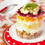 Herring salad — Stock Photo #18527019