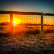 Ranch Sunrise - Stock Photo