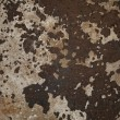 Rusty steel sheet of metal — Stockfoto