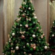 Christmas tree — Stock Photo #17676817