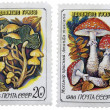 Postage stamps — Stock Photo #17678049