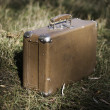 Brown suitcase — Stock Photo #17679045