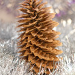 Cones on christmas — Stock Photo