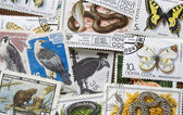 Collection of vintage stamps. Background — Stock Photo