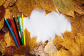 Frame from autumn leaves — Stock Photo