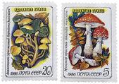 Poštovní známky — Stock fotografie