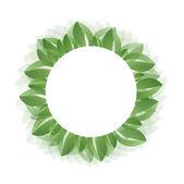 Fresh green leaves vector — Stock Vector