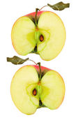 Apple halves — Stock Photo