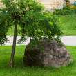 Large boulder near tree — Stock Photo #29357703