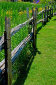 Old fence — Stock Photo
