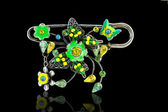 Brooch barrette — Foto Stock