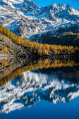 Codelago Lake in autumn — Stock Photo