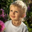 Beautiful smiling boy in a field of flowers — Stok fotoğraf