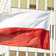 Polish flag — Stock Photo #22967390