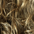 Curly blond hair - texture — Stockfoto #22967816