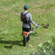 Stock Photo: Worker mowing grass with trimmer