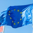 Stock Photo: Flag of the European Union