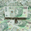 Polish currency - PLN - Polish zloty — Stock Photo