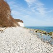 Chalk cliffs of Rügen Island — Stock Photo