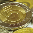 Polish money - Polish Zloty — Foto Stock