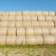 Gathered hay bales in a field — Stock Photo #39527959