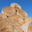 Gathered hay bales in a field — Stock Photo #39528053