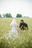 Wedding bride and groom outdoors — Stock Photo