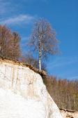 Nationalpark Jasmund - Sassnitz - Germany — Stock Photo