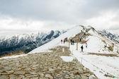 Polish Tatra mountains in winter in snow — Stock Photo