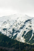 Tatras Mountains covered with snow in winter - Poland — Stock Photo