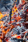 Burning fire and embers in shades of red as a danger — Stock Photo