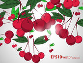 Cherry background — Stockvektor