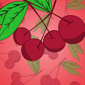 Cherry background — Stock Vector