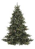 Holé vánoční strom s šiška — Stock fotografie