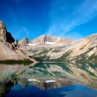 Stock Photo: Bow Lake Reflections 1