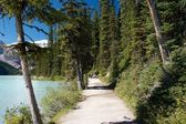 Trail Lake Louise — Stock Photo