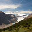 Saskatchewan Glacier - Stock Photo