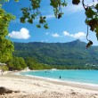 Stock Photo: Beau Vallon beach 2