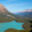 Peyto Lake 2 - Foto de Stock  