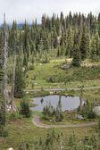 Pond on the mountain 1 — Stock Photo
