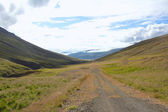 Rural Iceland Road — Stock Photo